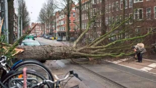 Dutch storm caused 90 million euros in damage