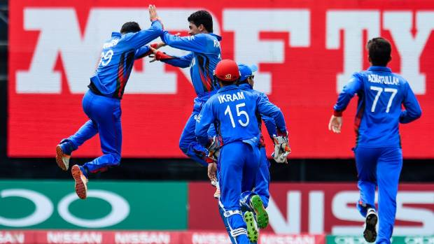 Afghanistan beat New Zealand to reach semi-finals