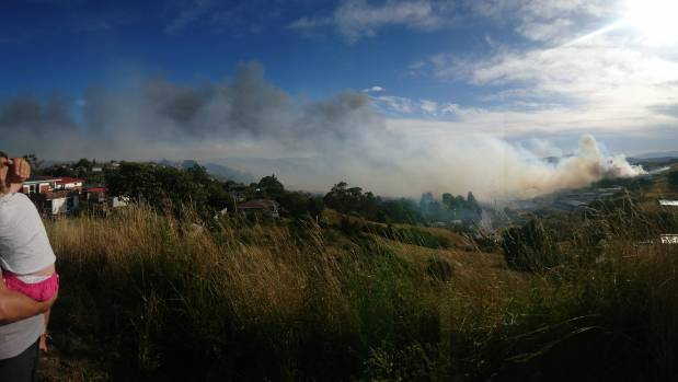 Police evacuate homes while firefighters battle significant Dunedin fire