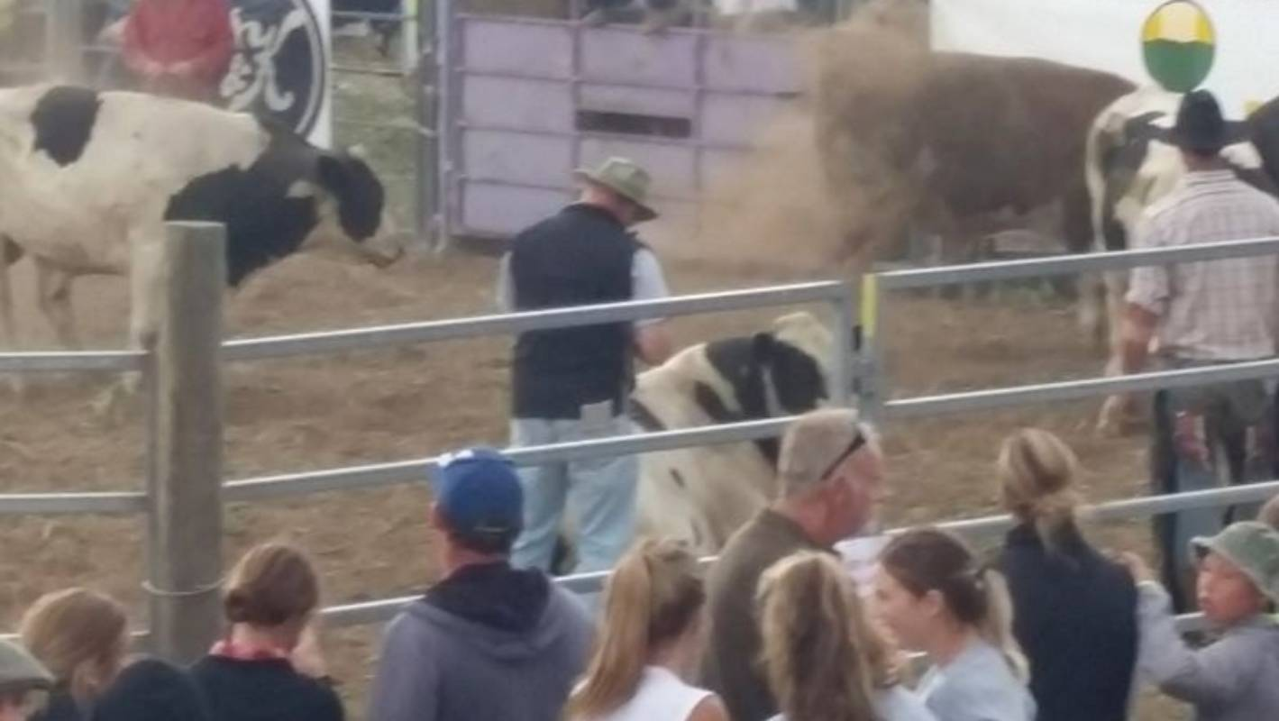 Rodeos Pitting Humans Against Animals Belong In The Past