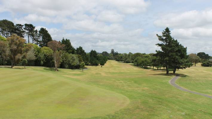 Auckland Council were given permission to go ahead and cut Chamberlain Park Golf Course in half, but plans are now on hold.
