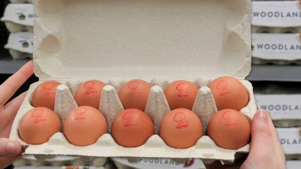 Translation error leaves Norway Olympic team with 15000 eggs