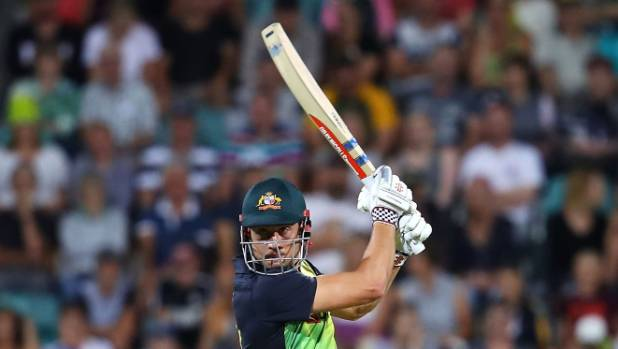 marcus stoinis returns to eden park the ground where his career started. Black Bedroom Furniture Sets. Home Design Ideas