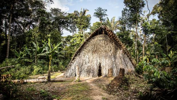 One of the Waorani's traditional malookas (huts) in the Amazonian rainforest, built without using nails.
