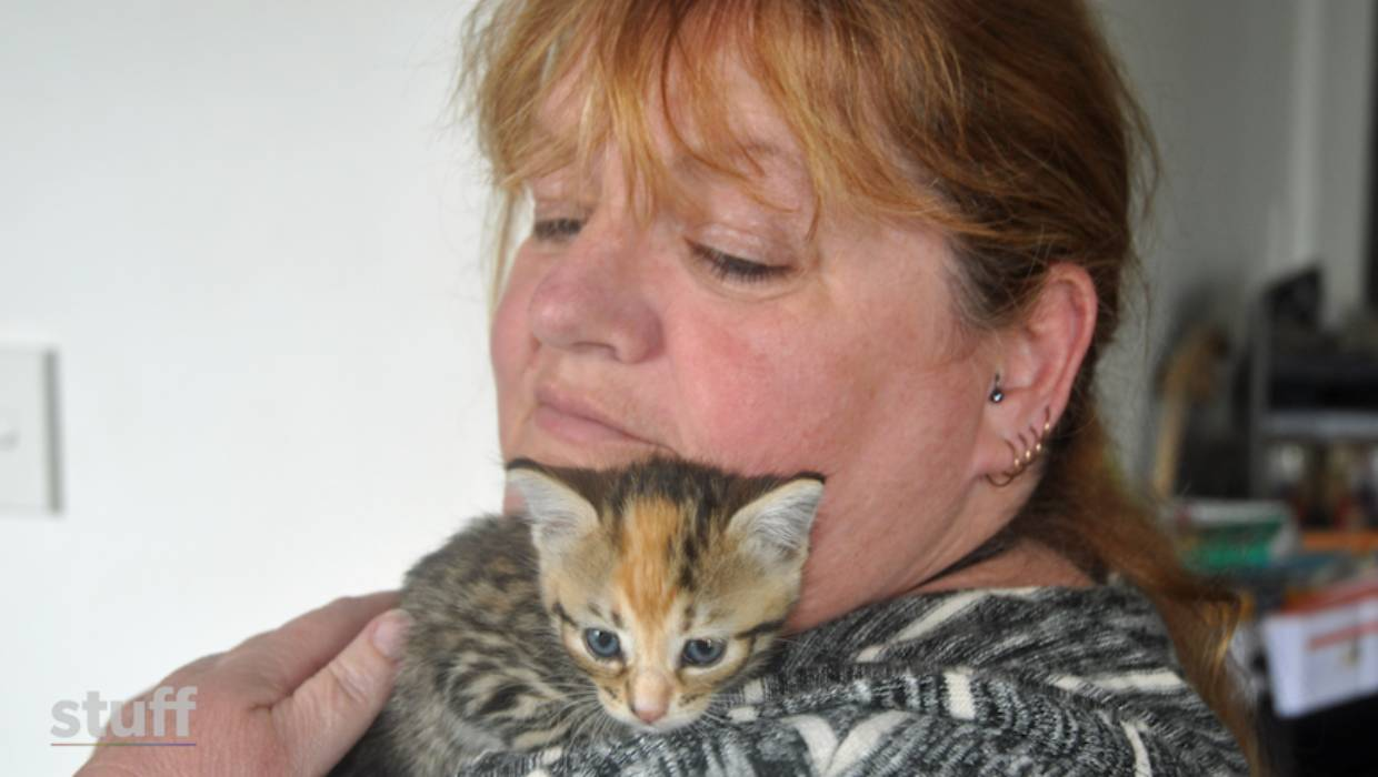 Susan Mcnair Frustrated By Irresponsible Cat Owners Stuff Co Nz