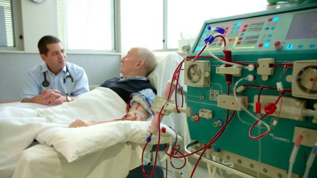 Living kidney donation in United Kingdom at eight-year low, says NHS