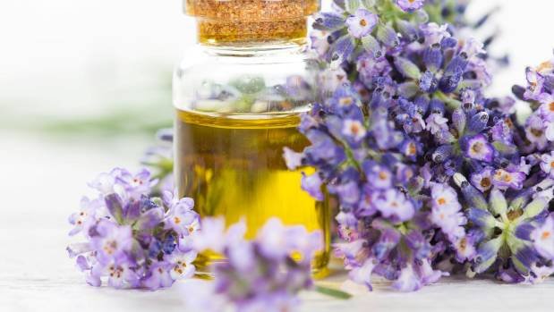 Essential Oils May Cause Boys to Develop Breasts
