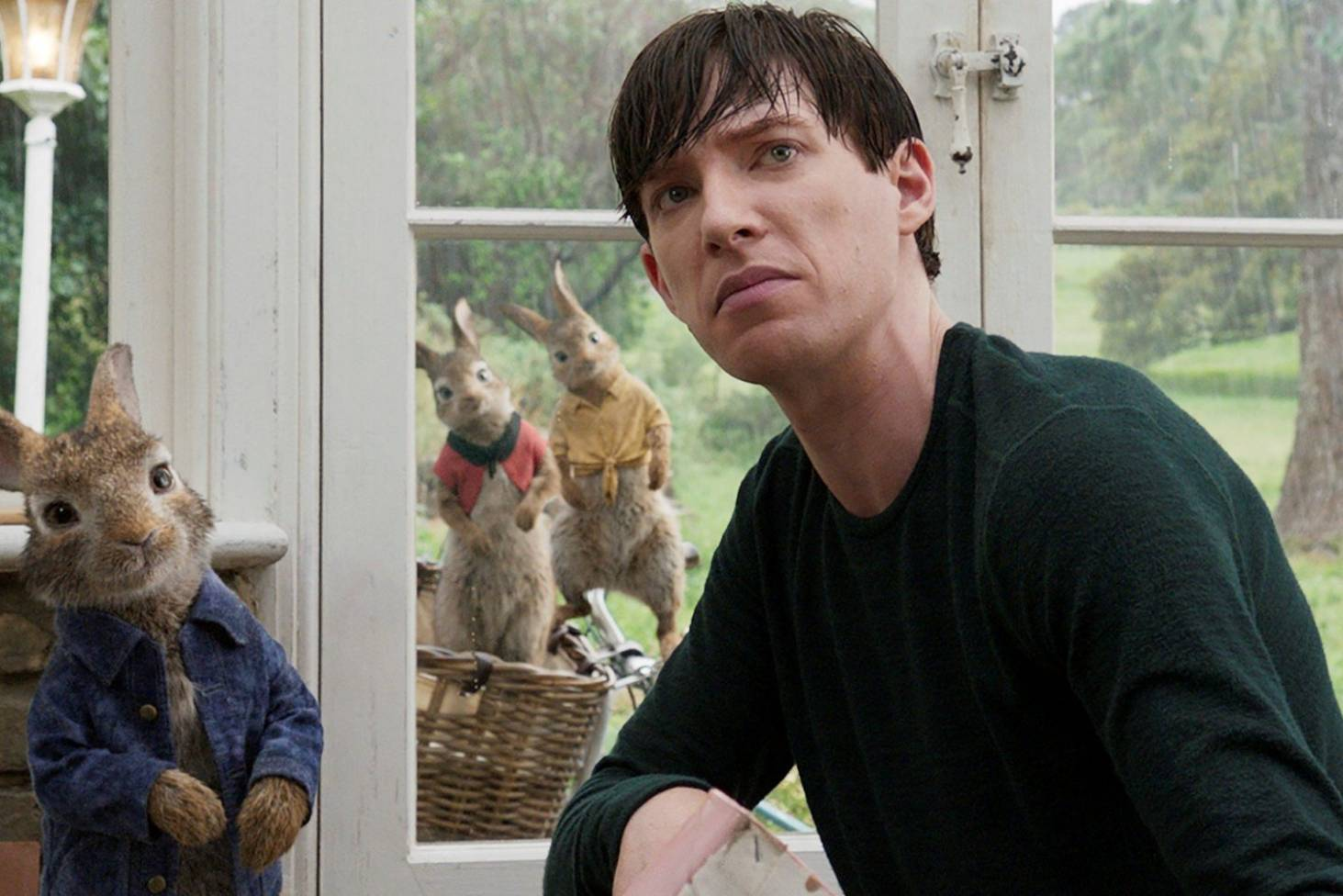 Peter Rabbit: Domhnall Gleeson sorry for allergy controversy but