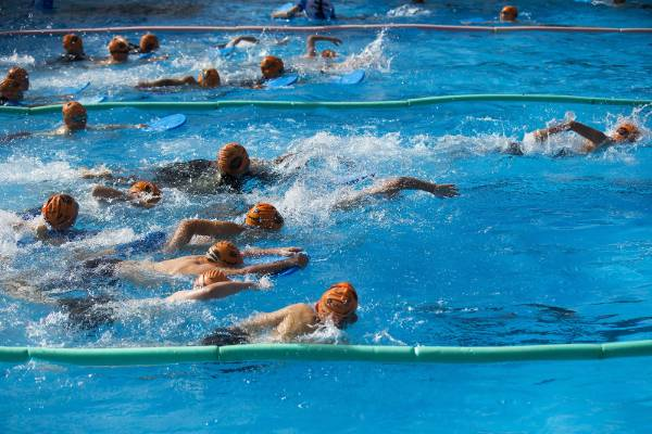 Palmerston north tryathlon busts entry records two years in a row for Palmerston north swimming pool