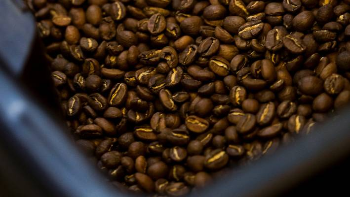 Some 75 wild coffee species are considered threatened with extinction the study said
