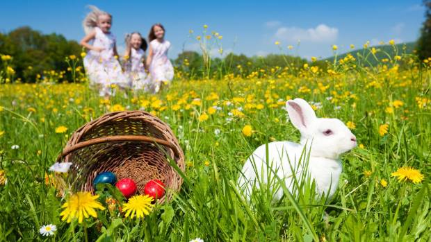 Easter doesn't need to be complicated. Throw some eggs in the back garden and put your feet up while the kids hunt