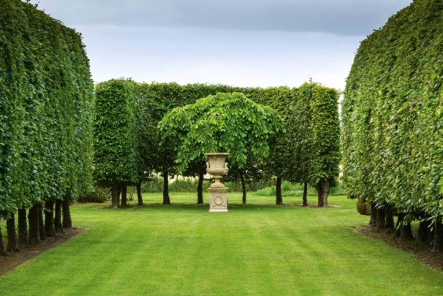 Garden In Palmerston North Stuff Co Nz