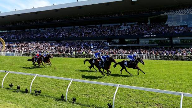 Winx Extends Win Streak to 24 With George Ryder Score
