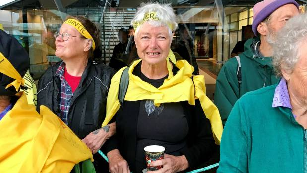 Three arrests made at Wellington protest