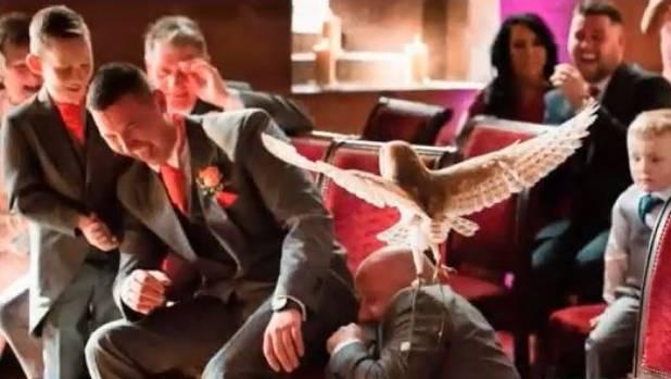 Owl Attacks Groomsman - Caught On Camera