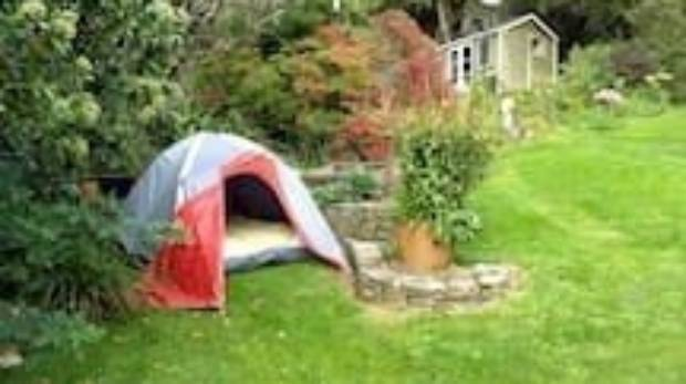 Dunedinite offers \'small tent in the garden\' for Sheeran concerts in ...