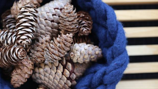 Fossicked pine cones provide texture and natural beauty and cost nothing.