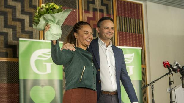 Green Party will stand candidate in Northcote by-election