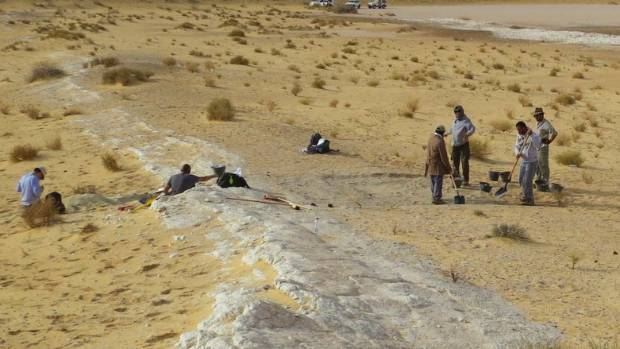 90000-year-old human finger fossil in Saudi desert challenges migration theory