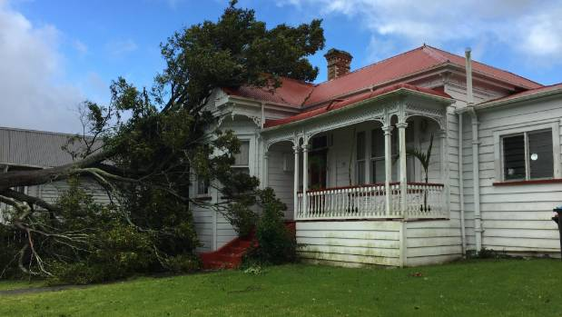 A tree has fallen onto a home on New North Road, Auckland.