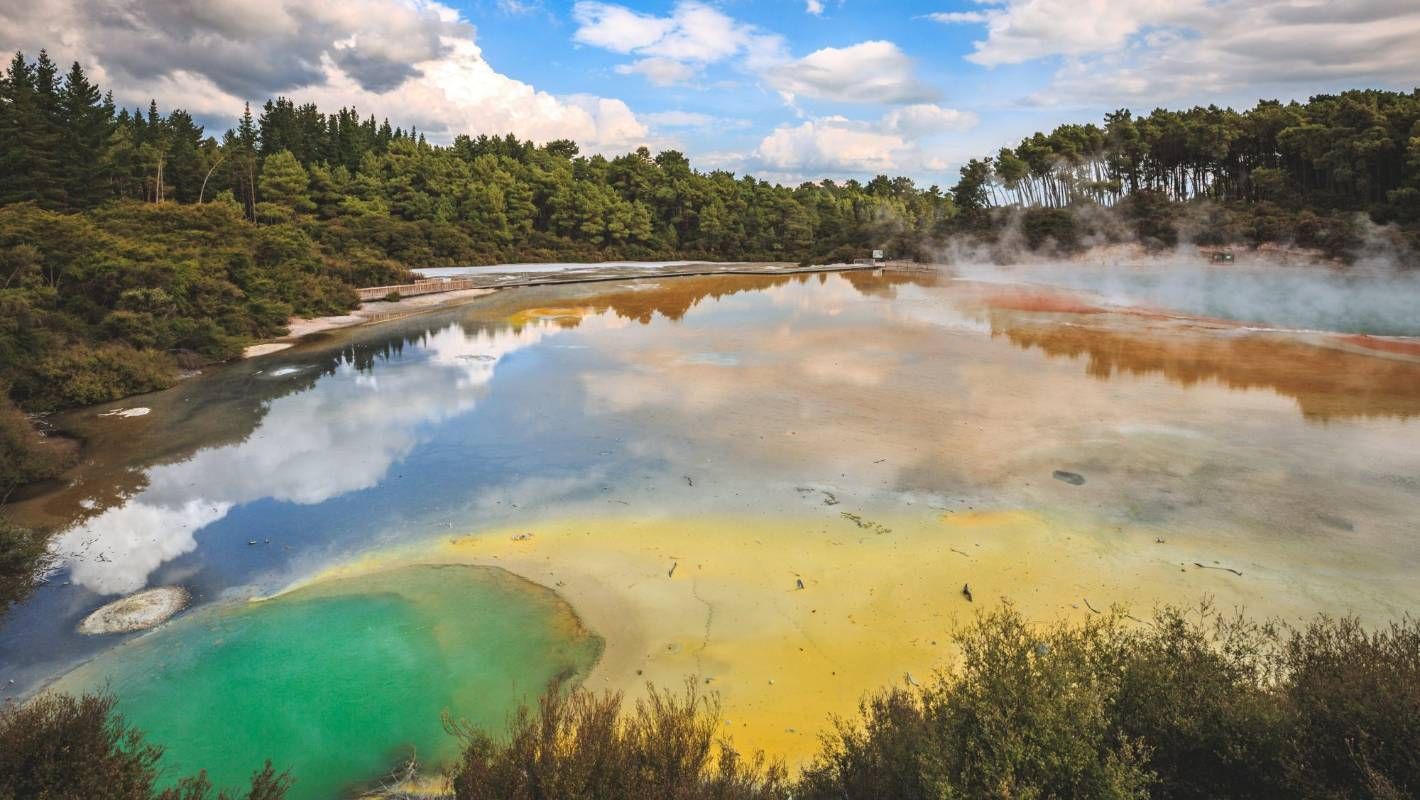 Top Reasons To Visit The Mud Pools And Forests Of Rotorua
