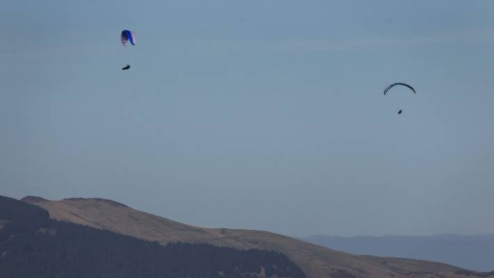 Injured paraglider slipped and fell 50 metres in Christchurch's Port