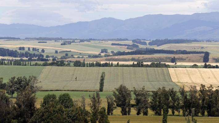 in 1986, the Ministry of Works predicted the nitrate contamination we now see as a consequence of regional irrigation schemes. It made it clear that alternative drinking water supplies would have to be found for Canterbury residents.