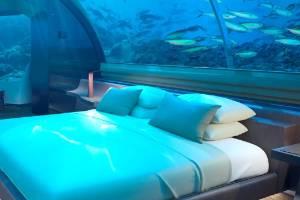 The Muraka's bedroom, below the sea.