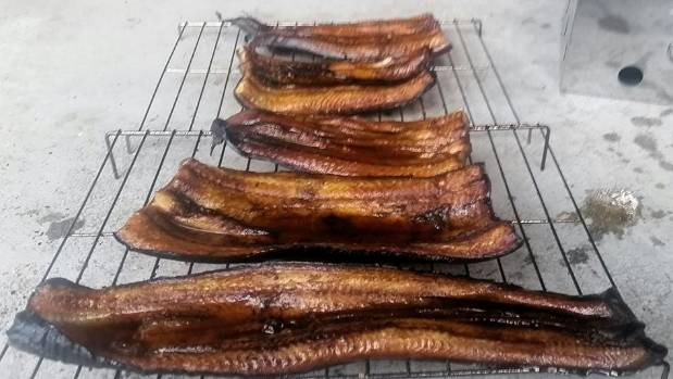 Smoked eel meat may soon be a 'guilt free' pleasure.