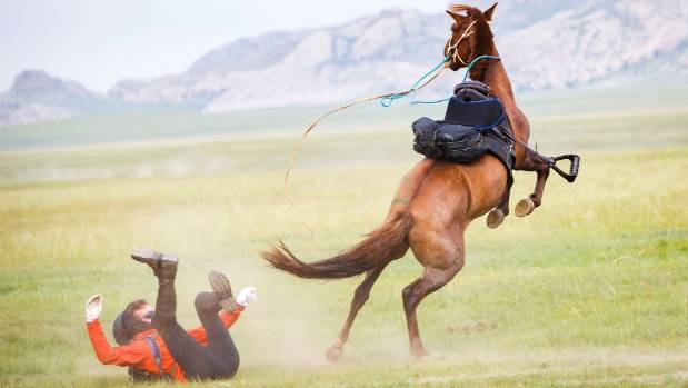 Even the most experience horse riders can get thrown from the wild Mongolian ponies used for the race. Injuries include ...