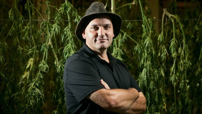 Manu Caddie, the Managing Director of the Hikurangi Cannabis Company said he hopes to protect the low THC-varietals his company creates through plant variety rights.