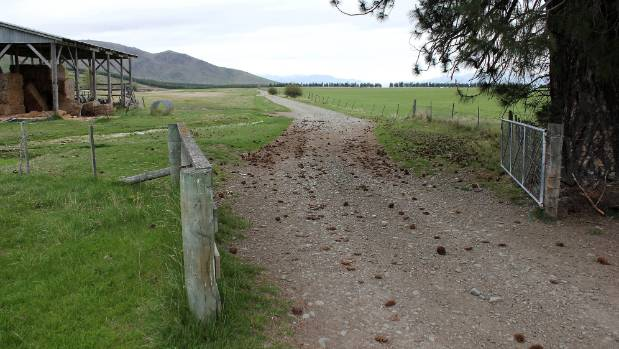 A view across Murray Valentine's property, Simons Pass, where he is proposing a large dairying operation. (File photo).