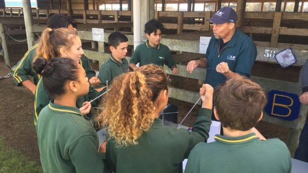 Stephen Foreman talks Hawera Intermediate students through the finer points of artificial insemination.
