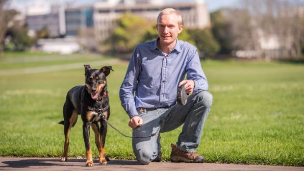 Funding for Waikato research in to dogs' ability to sniff out cancer