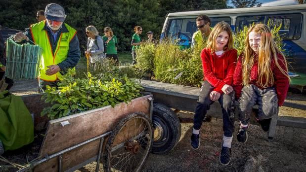 Volunteers plant 1500 trees in Marahau slip sites