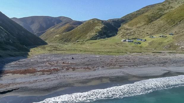 Windswept, remote beach for sale could offer the perfect alternative lifestyle
