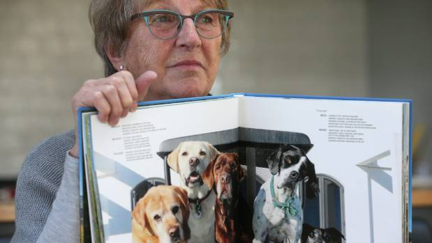 Marlborough woman Paula Hill's brown labrador Phoebe was mauled outside a vet clinic. Phoebe had to be put down because ...
