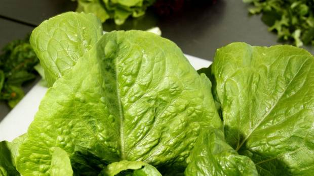 CDC Says E Coli Outbreak Tied to Romaine Lettuce Is Over