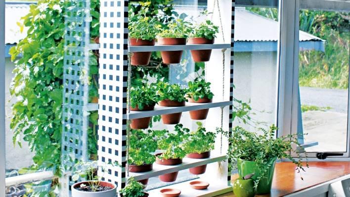 DIY: Hanging Windowsill Herb Planter