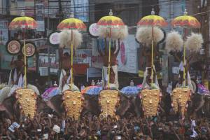 Mahouts raise elaborate umbrellas above adorned elephants in front of 500,000 people at Thrissur's popular Hindu festival.