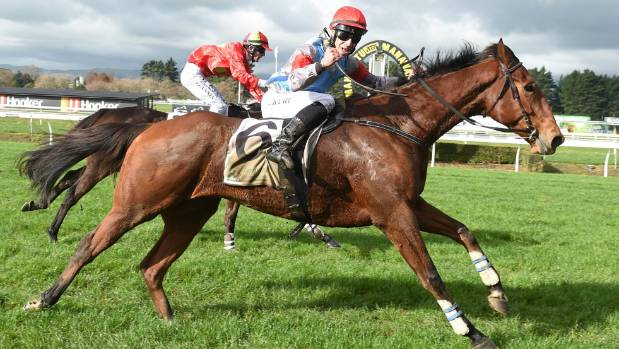 Incredible recovery leads to stunning win in NZ steeplechase