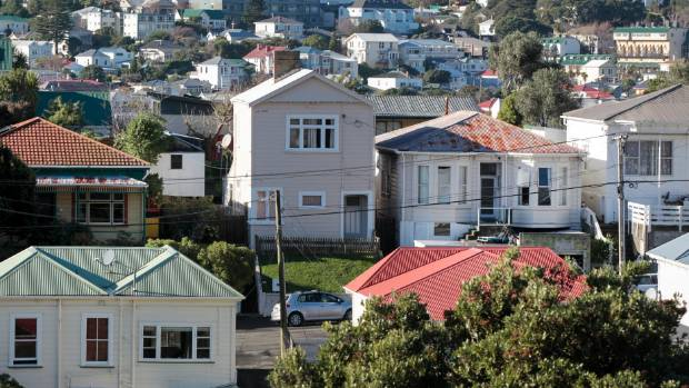 Wellington's old houses are the cause of many renter horror stories.