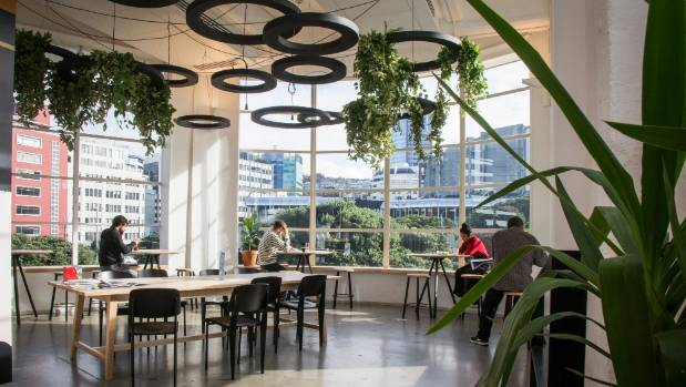BizDojo's upmarket new Wellington waterfront shared space used to be occupied by tech firm Xero.