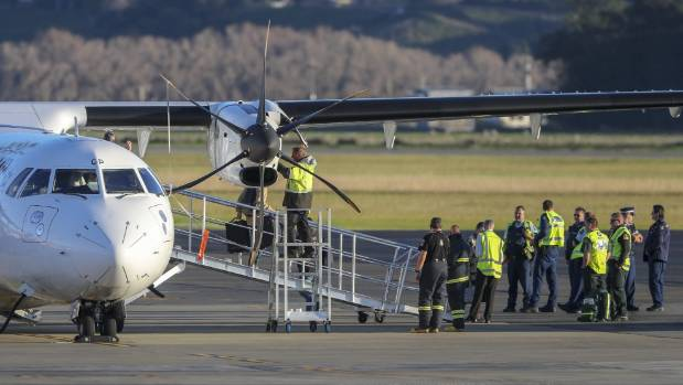 Plane lands at Napier airport after engine fire