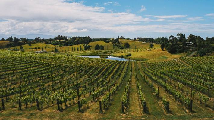 Mahana Estates was recently placed into receivership and is at the centre of a legal dispute between its investors.