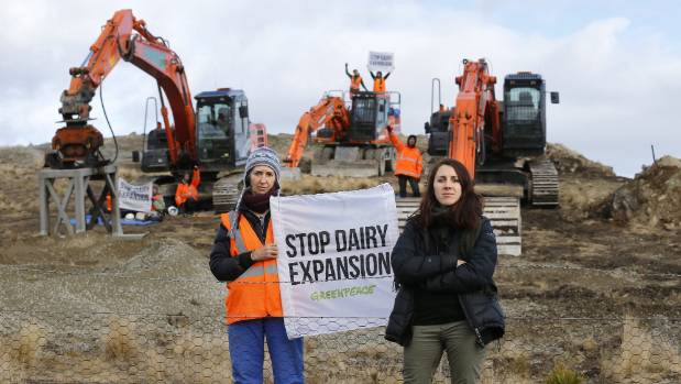 Greenpeace activists protest the proposed expansion of dairy farming at Simons Pass Station last week.