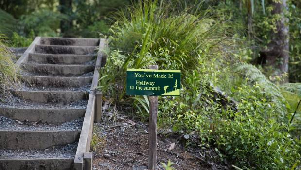 Next time you haul yourself up the Waikato region's most popular steps, you can plug in your headphones and be toured ...