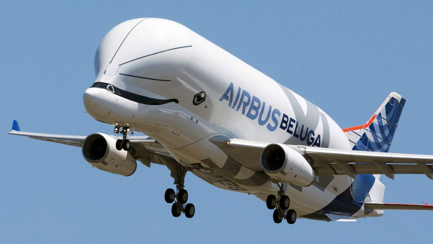 Image result for Beluga plane