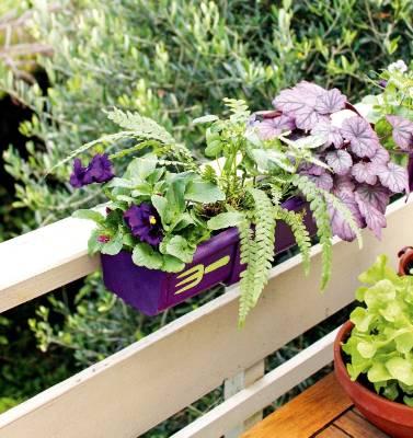 DIY gutter garden | Stuff.co.nz