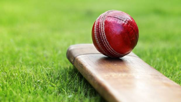 Just not cricket! Club bowler's actions stop batsman making maiden ton